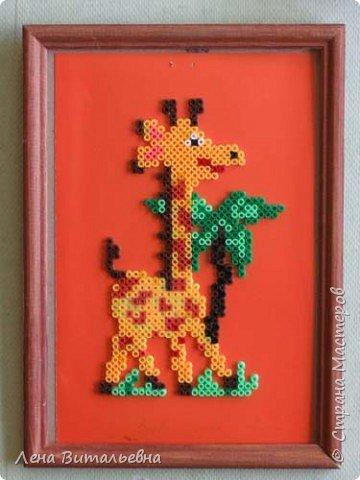 Жирафы разные важны, жирафы разные нужны фото 8