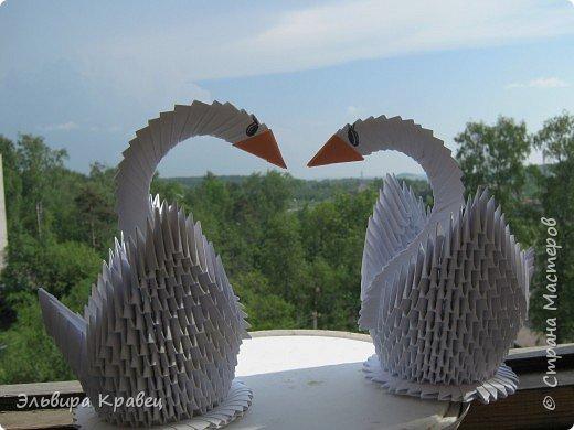 Я сделала ещё одного лебедя... фото 4