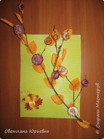 Осенняя веточка