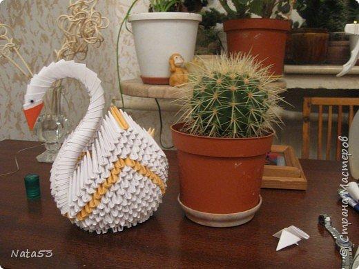 Оригами модульное: Лебеди с бычком фото 2