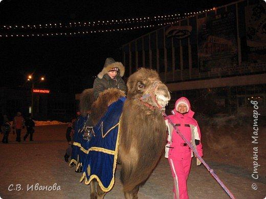 Прогулка морозным вечером