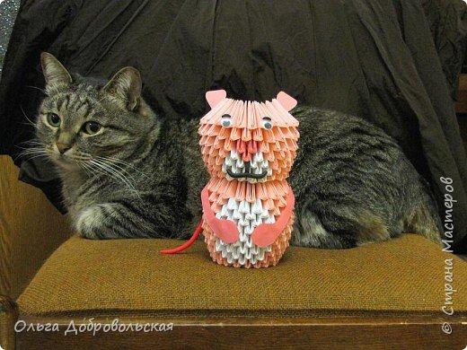 Оригами модульное: Кошачьи