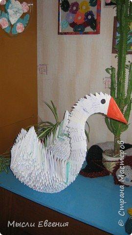 Оригами модульное: лебедь фото 4