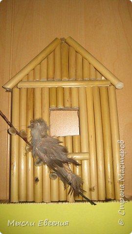 день птиц фото 3