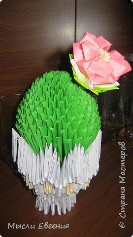 Оригами модульное: и у меня зацвел...