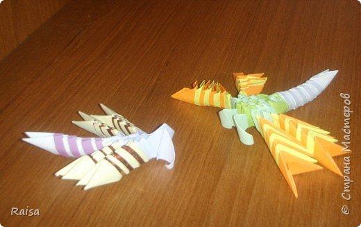 Мои стрекозы