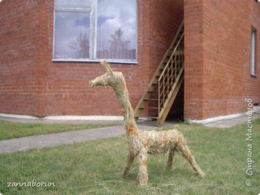 Животные из сена фото 1