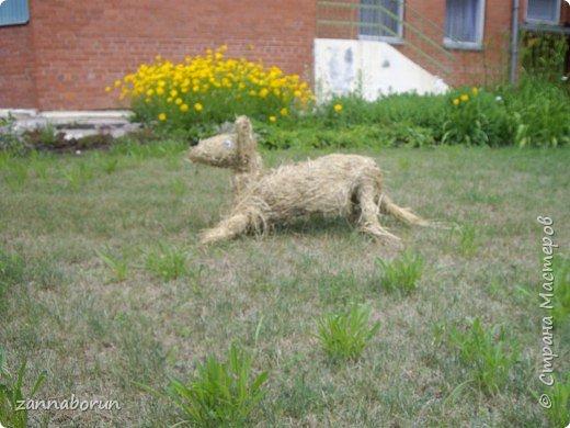 Животные из сена фото 4