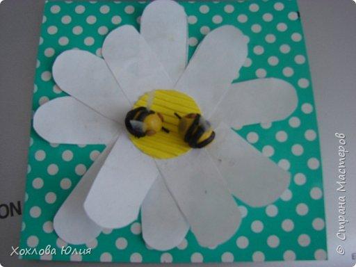 пчёлки на ромашке