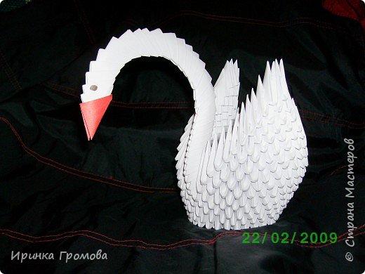 Оригами модульное: Лебедь.
