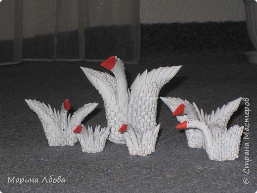 Оригами модульное: Лебединное озеро фото 1