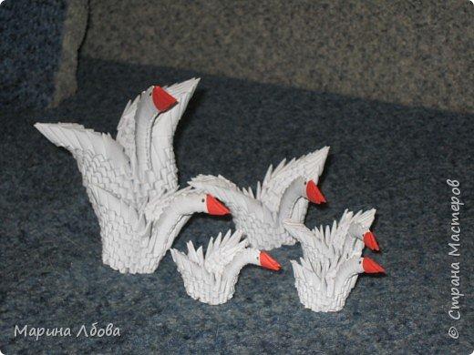 Оригами модульное: Лебединное озеро фото 2