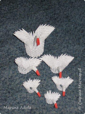 Оригами модульное: Лебединное озеро фото 3