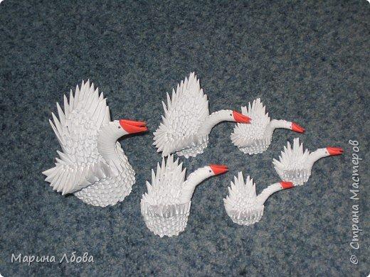 Оригами модульное: Лебединное озеро фото 4