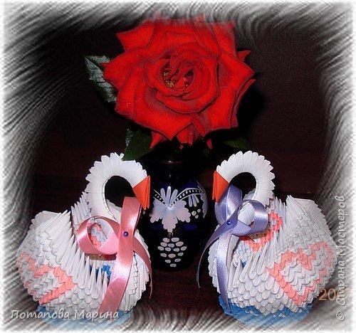 лебеди любви