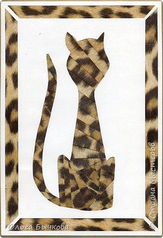 Айрис фолдинг: Кошка, которая гуляла сама по себе.