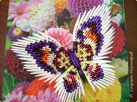 Оригами модульное: бабочки фото 2