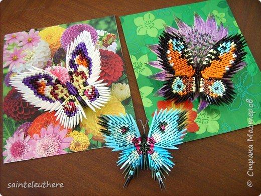 Оригами модульное: бабочки фото 1