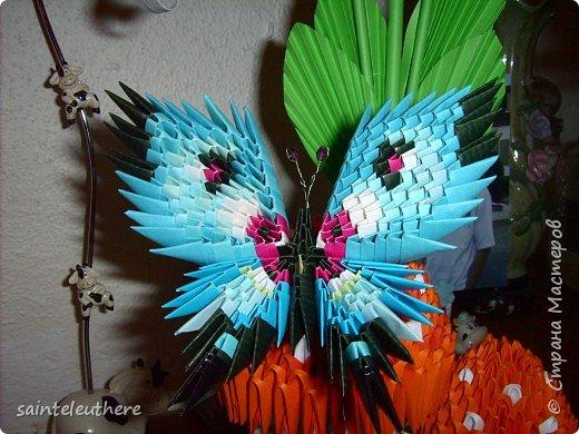Оригами модульное: бабочки фото 3