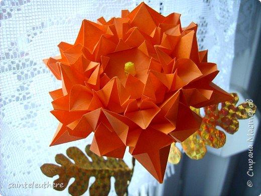 Оригами: хризантема фото 3