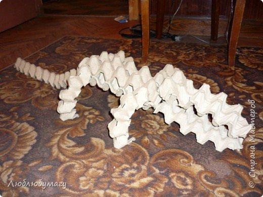 Крокодил фото 3
