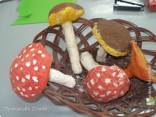 грибочки фото 2
