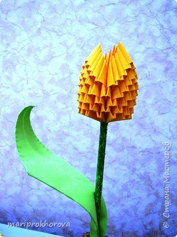 Оригами модульное: Работы моих учеников фото 2