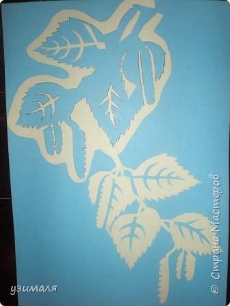 Вытынанка: Ветви березы