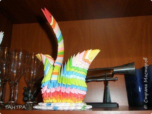 Оригами модульное: Первые мои работы фото 1