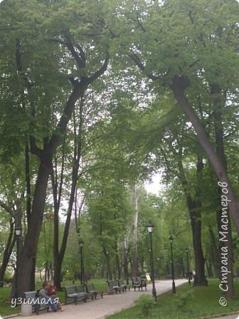 Городской парк фото 4