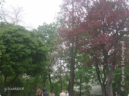 Городской парк фото 6