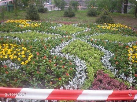 Городской парк фото 3