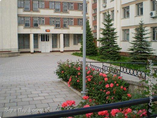 Моя школа фото 3