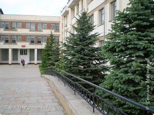 Моя школа фото 2