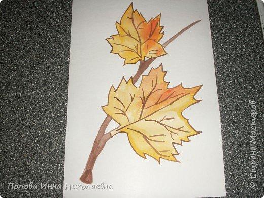 Листья фото 1