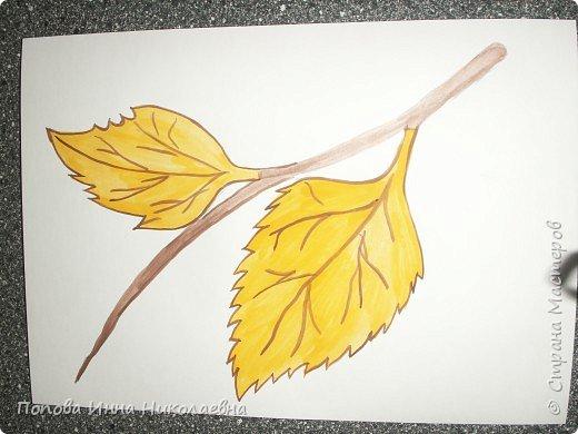 Листья фото 2