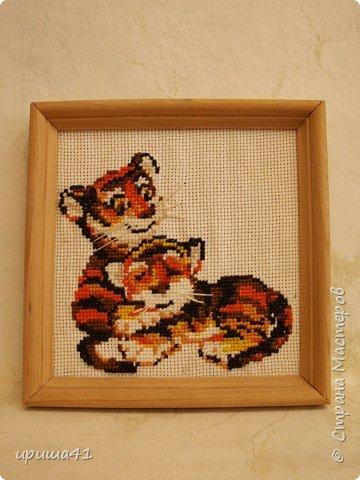 Вышивка крестом: Эй, не стойте слишком близко, мы тигрята, а не киски!