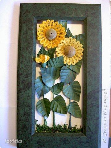 Квиллинг: Цветы и бабочка фото 3