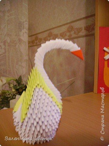 Оригами модульное: Мои птицы фото 1