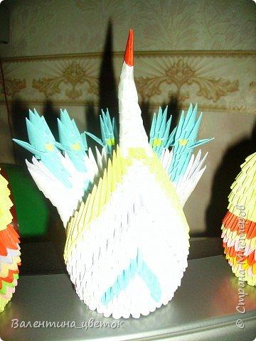 Оригами модульное: Мои птицы фото 3
