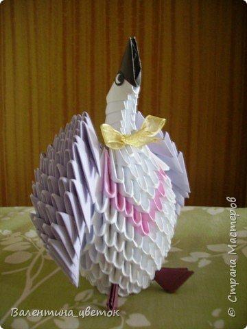 Оригами модульное: Еще пернатые фото 6