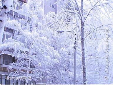 Первомайская зима Екатеринбурга фото 1