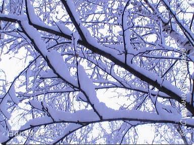 Первомайская зима Екатеринбурга фото 2