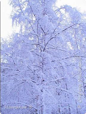 Первомайская зима Екатеринбурга фото 4