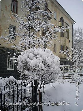 Зазывали весну - пришла зима фото 2