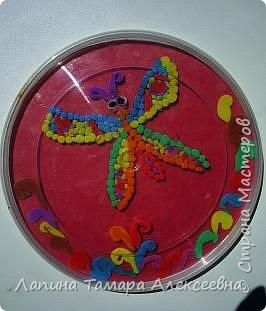 Бабочка Насти Блинковой фото 1