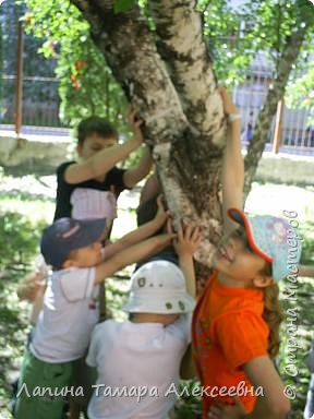 У природы наступила праздничная неделя - Зеленые святки. А у березки именины. Наряжали мы березки в своем парке у гимназии. фото 6