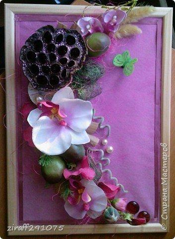 Орхидея в розовом
