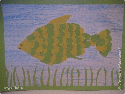 Рыбки на любой вкус!!! фото 3