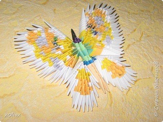 Оригами модульное: Бабочка (3)